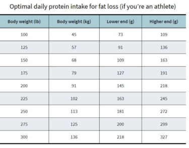 how much protein per day fat loss