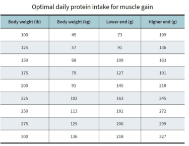 how much protein per day gain muscle
